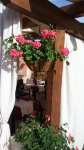 B&B Zahir, Bed and breakfasts  Castro di Lecce - big - 63