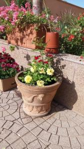 B&B Zahir, Bed & Breakfast  Castro di Lecce - big - 58