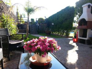 Etma, Bed & Breakfasts  Sant'Alfio - big - 49