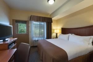 Holiday Inn Steamboat Springs, Отели  Стимбот-Спрингс - big - 13