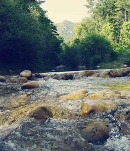 Forest Days, Campeggi di lusso  Navés - big - 18