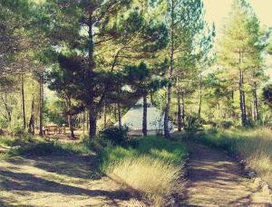 Forest Days, Люкс-шатры  Navés - big - 10