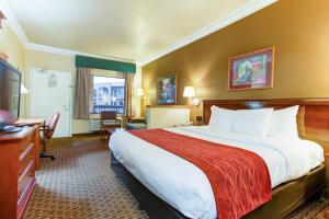 Suite King com Vista Pátio