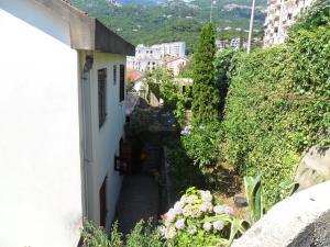 Apartment Topla, Apartments  Herceg-Novi - big - 6