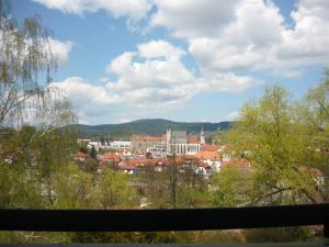 Ubytování Jelínková, Guest houses  Český Krumlov - big - 18