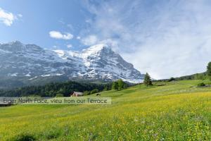 Aspen Alpine Lifestyle Hotel, Hotely  Grindelwald - big - 55