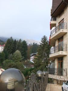 Hotel Arca lui Noe, Hotel  Sinaia - big - 61
