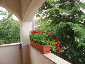 Apartments Porec Istria By Nina, Apartmány  Poreč - big - 9