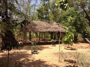 Guruge Villa Habarana, Locande  Sigiriya - big - 25