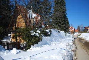 Apartment Lazarevića Buca, Apartments  Zlatibor - big - 3