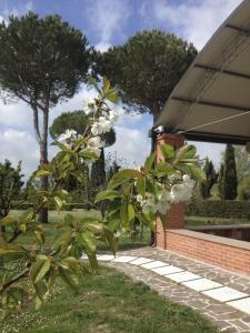 Podere Il Mulino, Bed and Breakfasts  Pieve di Santa Luce - big - 66