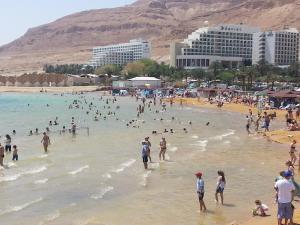 Rose Dead Sea Neve Zohar, Penzióny  Neve Zohar - big - 40