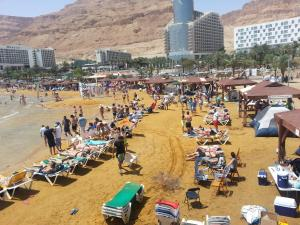 Rose Dead Sea Neve Zohar, Penzióny  Neve Zohar - big - 39