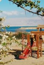 Rose Dead Sea Neve Zohar, Penzióny  Neve Zohar - big - 6