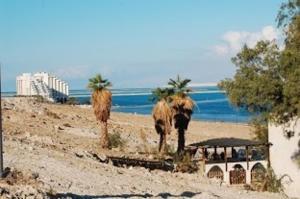 Rose Dead Sea Neve Zohar, Penzióny  Neve Zohar - big - 5