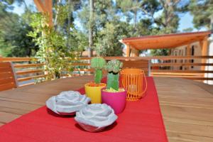 Campsite Sunny Home Soline, Комплексы для отдыха с коттеджами/бунгало  Биоград-на-Мору - big - 61