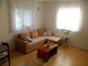 Apartment Vienna, Apartmanok  Drežnik Grad - big - 9