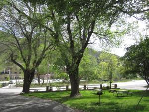 Wapiti Lodge, Motelek  Durango - big - 106