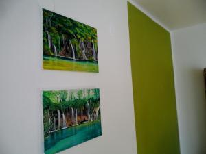 Apartment Vienna, Appartamenti  Drežnik Grad - big - 28