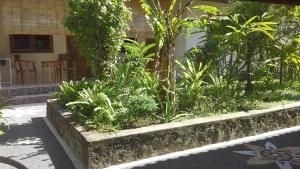 Jimbaran Home Stay Bali, Homestays  Jimbaran - big - 7