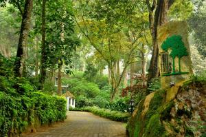 The Tall Trees, Resorts  Munnar - big - 22