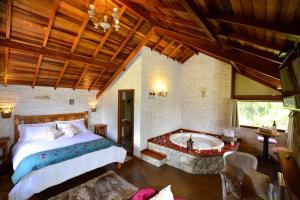 Pousada Villa Monte Verde, Penziony – hostince  Monte Verde - big - 36