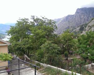 Olive Apartment, Apartments  Kotor - big - 3