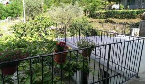 Olive Apartment, Apartments  Kotor - big - 6