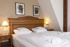 Wyndham Garden Quedlinburg Stadtschloss, Hotely  Quedlinburg - big - 8