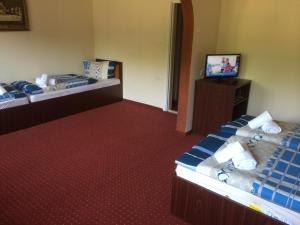 Hotel Le Baron, Hotel  Timisoara - big - 24
