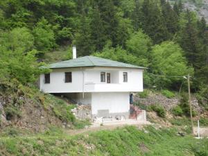 Mountain House Dağ Evi, Дома для отпуска  Ardıçlıyayla - big - 2
