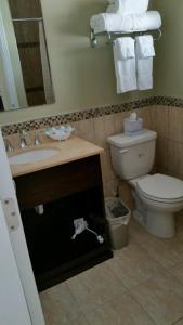 Island Shores Inn, Мотели  Сент-Огастин - big - 30