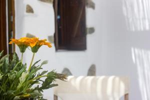 Sourmeli Garden Hotel, Hotel  Città di Mykonos - big - 35