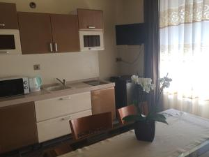 Family Hotel Allegra, Hotely  Obzor - big - 14