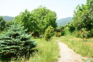 Bio Yard, Penzióny  Lagodekhi - big - 43
