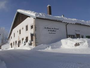 B&B La Ferme De Pouillerel, Bed and breakfasts  La Chaux-de-Fonds - big - 17