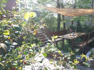 Vacanze Toscane In The Country, Apartmanok  Sassetta - big - 94