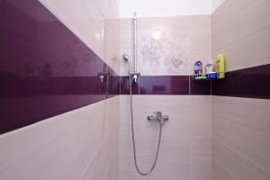 Apartmant Lavandula, Apartments  Dubrovnik - big - 28