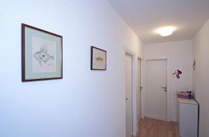 Apartmant Lavandula, Apartments  Dubrovnik - big - 17