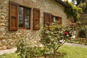 Relais Borgo Di Toiano, Vidiecke domy  Sovicille - big - 37