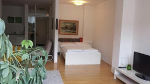 Viennaflat Apartments - 1010, Apartments  Vienna - big - 35
