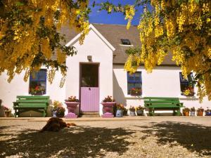 Clondanagh B&B and Farm-on-the-Lake, B&B (nocľahy s raňajkami)  Tulla - big - 21