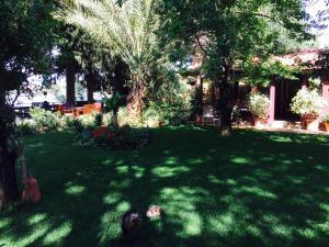 Hotel Happy Caretta, Pensionen  Dalyan - big - 35
