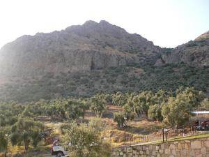 Natureland Efes Pension, Residence  Selcuk - big - 11
