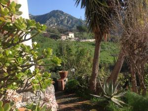 Casa Mastrissa, Ferienwohnungen  Taormina - big - 19