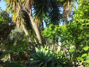 Casa Mastrissa, Ferienwohnungen  Taormina - big - 22