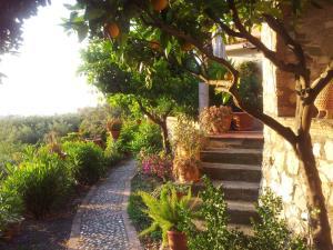Casa Mastrissa, Appartamenti  Taormina - big - 23