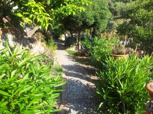 Casa Mastrissa, Appartamenti  Taormina - big - 25