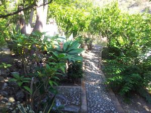 Casa Mastrissa, Ferienwohnungen  Taormina - big - 26