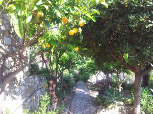 Casa Mastrissa, Ferienwohnungen  Taormina - big - 30